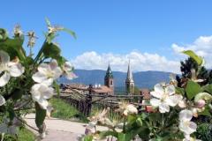 Blick-von-Ferienwohnung-zu-Kirchturm-St.-Nikolaus