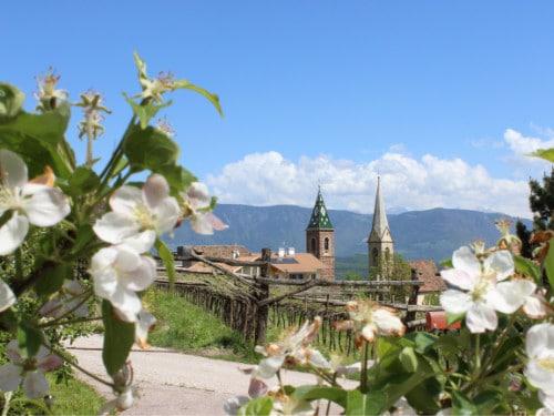 Blick Ferienwohnung Kirchturm St. Nikolaus